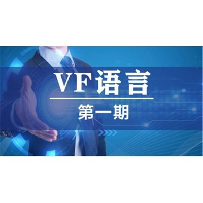 VF语言精讲一期
