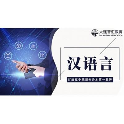 专业课-汉语言文学